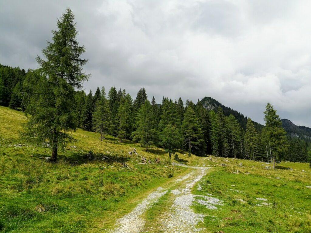 Etappe 14 Alpe Adria Trail - Oostenrijk