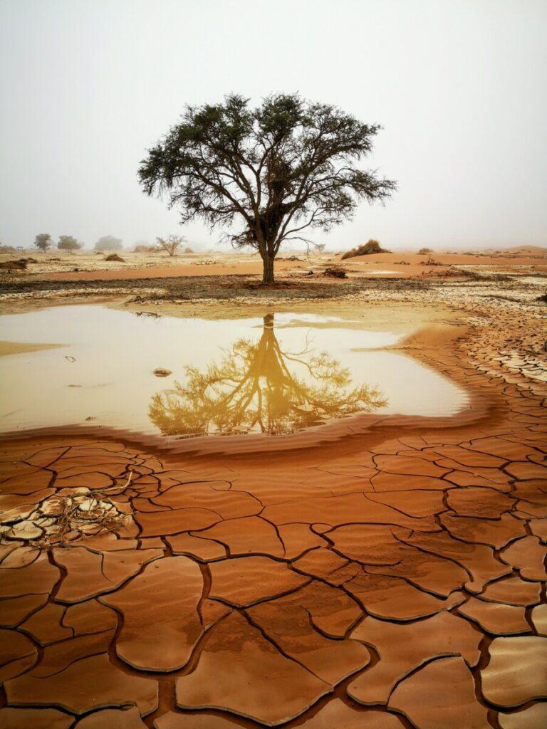Solo Rondreis Namibië met 4WD - 10.000 km Alleen in Namibië rondreizen