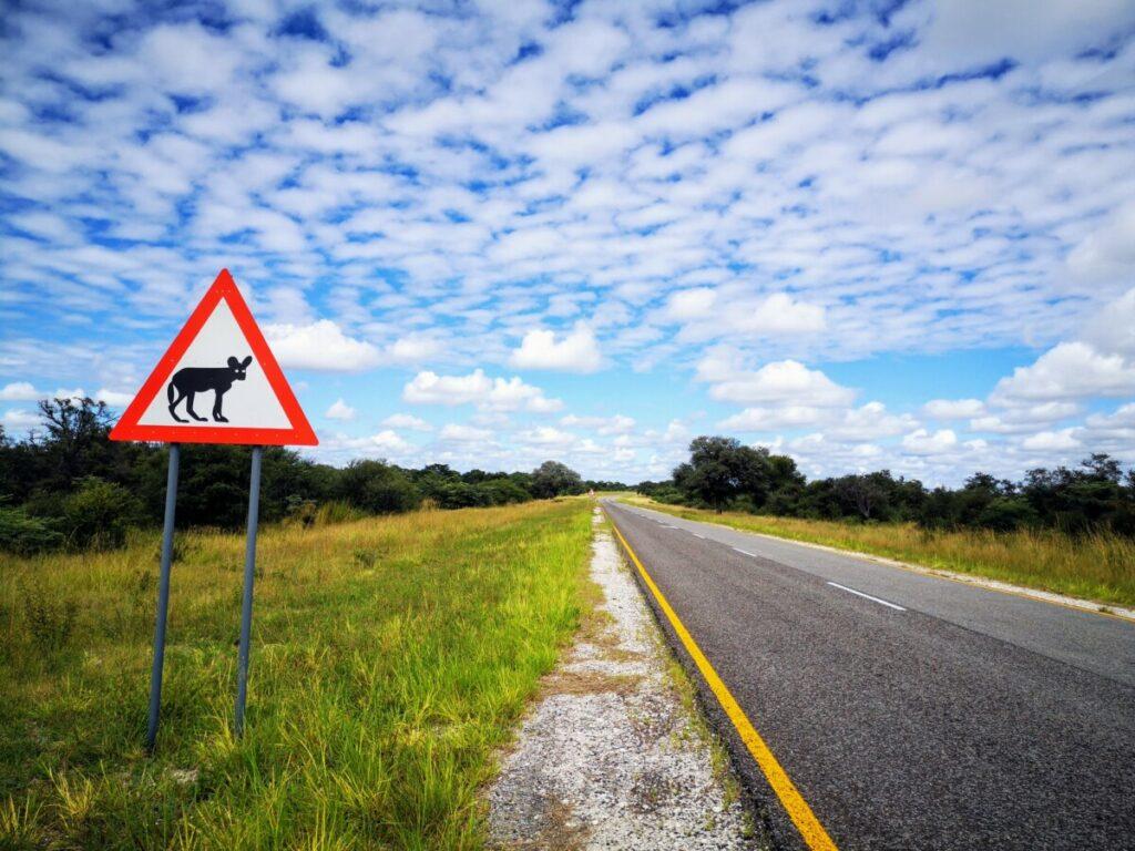 De lange en goede wegen van Namibië