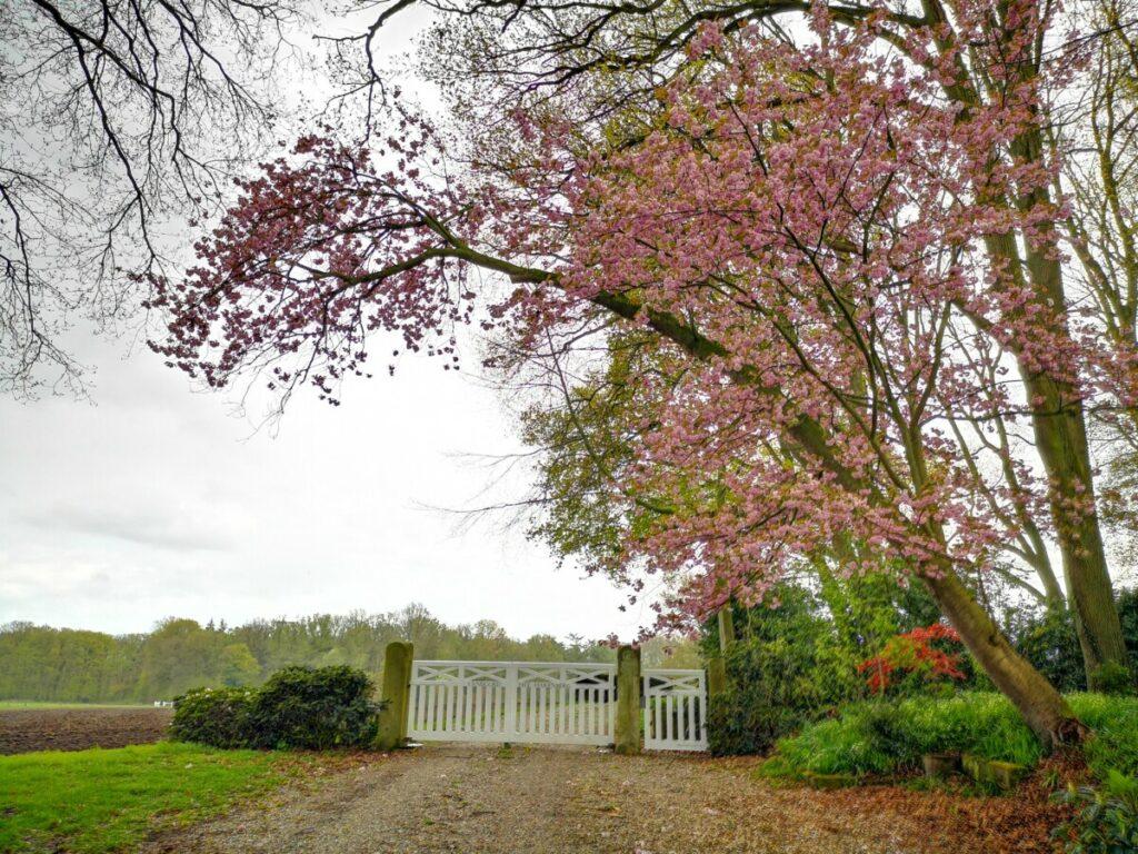 Entree villa Hakenberg - De Lutte Hakenberg