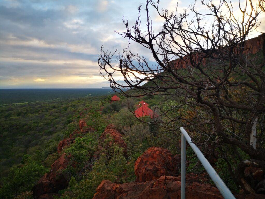Natuur rondom Waterberg Plateau National Park