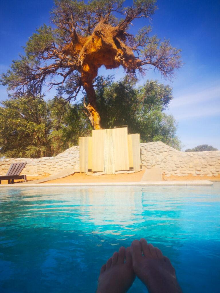 Lekker zwembadje bij Sesriem Campsite