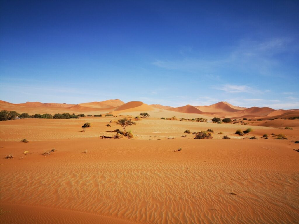 In the Middle of Nowhere - Deadvlei