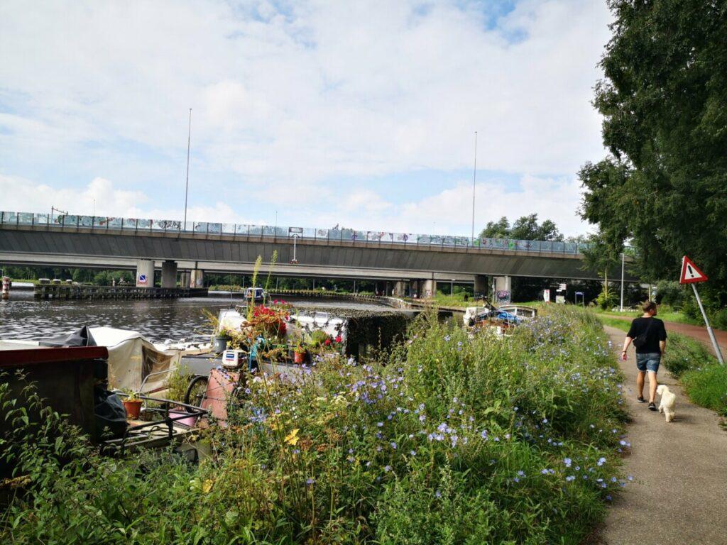 Wandelen langs de Amstel - Amsterdam