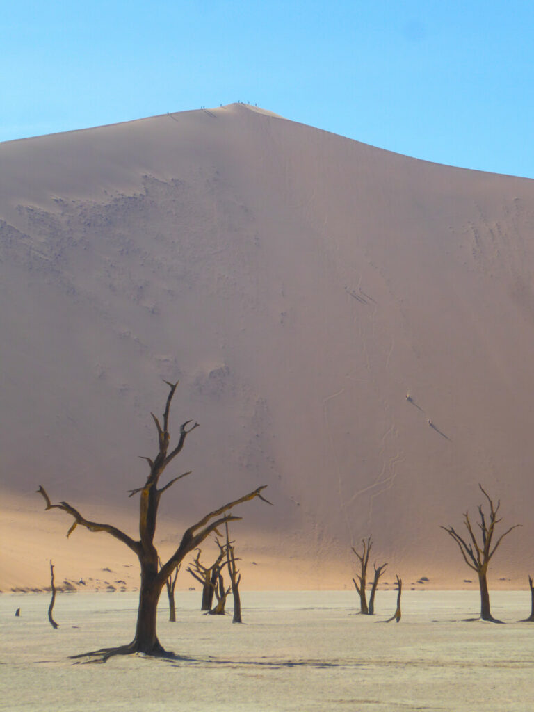Big Daddy, De hoogste duin van Deadvlei - Namibië