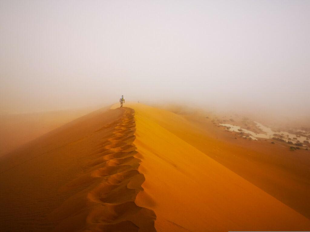Deadvlei Namibië - Meest iconische plekje van Namibië